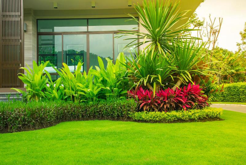 شركة تنسيق حدائق منزلية دبي