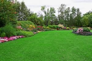 شركة تنسيق حدائق منزلية الشارقة