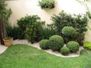 شركة تنسيق حدائق ابوظبي