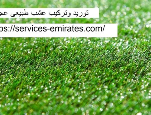 توريد وتركيب عشب طبيعي عجمان |0566719609| نجيل طبيعي