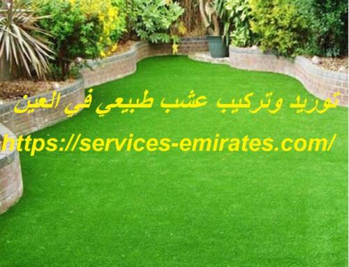 توريد وتركيب عشب طبيعي في العين |0566719609