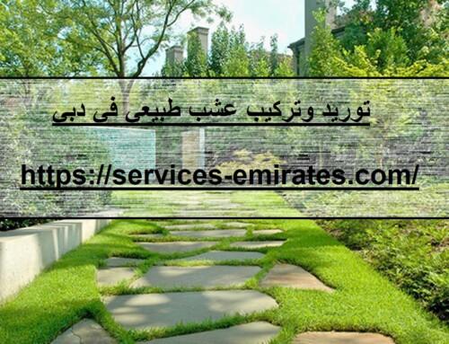توريد وتركيب عشب طبيعي في دبي |0566719609| تنسيق حدا