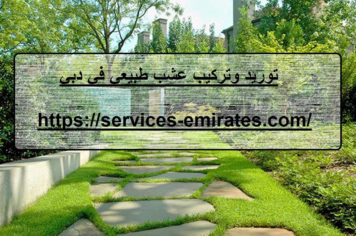 توريد وتركيب عشب طبيعي في دبي