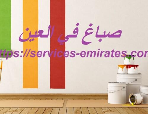 صباغ في العين |0566719609| صباغ رخيص